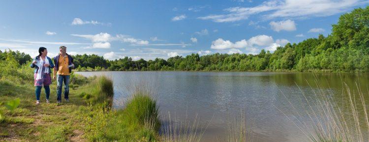 réserve naturelle régionale Landes de Monteneuf